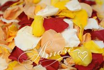 Freeze Dried Rose Petals / Freeze Dried Rose Petals from iRosePetals