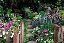 OTHER GARDEN PICTURES / Pictures of gardens found in pinterest