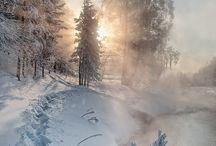 Sensational Seasons