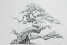 Drawings bonsai