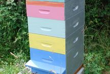 Cool Beehives