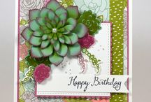 Stampin Up - Oh So Succulent