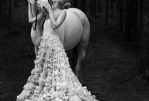 Equine Wedding
