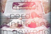 cute quotes...