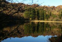 Lakeland Views / Stunning Lakland scenery