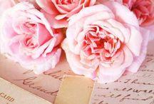 write to me... / by Rene Thompson