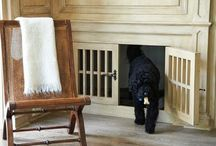 Dog: dog spaces and accessories