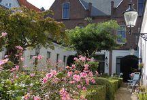 Hofje In Den Groenen Tuin / Mooie plaatjes van het hofje