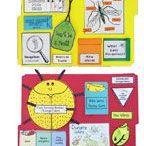 Teaching K3-6 School Science