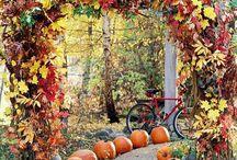 Decorate for Fall / Sidewalk / by Rochelle Mast