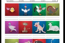 Actividades -Clase de español / Ideas & materials for Spanish teachers / by Rosalinda Bolanos