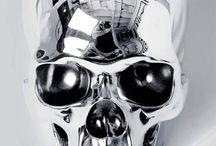 skeleton's & skull's