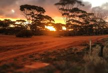 Golden Outback Sunsets