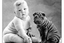 animals! / by Christina Graber