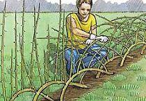 fazer jardins