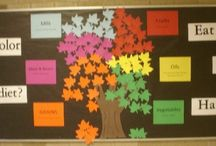 Bulletin Boards / by Sarah Kirkland