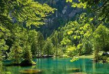 Vakker natur med vann, skog og fjjell
