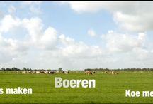 Sfeerimpressies / Ontdek het Groene Hart, een oer-Hollands natuurgebied. Trek eropuit geniet van de vergezichten met molens, knotwilgen en de koeien in de weilanden, bezoek de stadje of ga langs bij één van de molens, kastelen of forten.