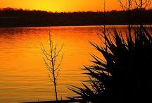 Sunrise - Fav Time  / by Karen Harris