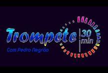Aulas de Trompete Online / Encontre os  melhores cursos de Trompete Online do Brasil ,estude em sua casa  com suporte do professor  e  pague uma parcela mais barata que uma pizza com refrigerante ,saiba mais no whatsap (51) 995288460 ou no site www.aulasdemusica.net