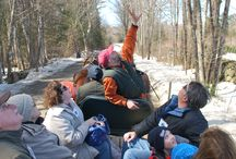 Maple Weekends / Enjoy a great time with the family learning how to make NH maple syrup with our hands on event. Horse drawn rides, tractor drawn rides, help tap a tree.