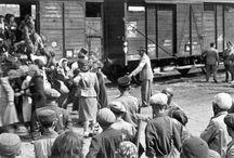 Kırım ve Ahıska sürgünleri