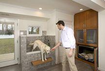 Pet Home Ideas