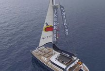 Freebird One - Catamarans