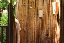 bambu pring
