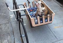 bicicletas e ideas