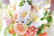 fleurs / by Marine Chanut