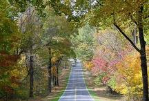 Alabama- my sweet home / by Myra Yarbrough