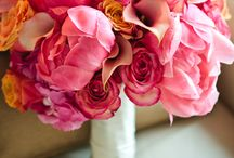 Flowers.Bouquets / by Cherryl Navarra