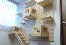 Espaços para gatos