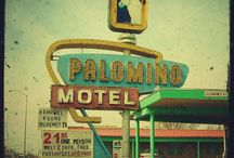 No Tell Motel / The disappearing art of the motel sign.