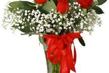 Roses | Güller / Sevdiğini mutlu etmek isteyenin tercihi, yüzlerce rengi ile herkesi kendine aşık eden güllerin büyülü dünyasına açılan kapıları Melis Çiçek farkıyla yaşamaya ve yaşatmaya ne dersiniz?