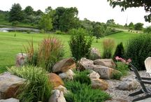 Landscape & Garden Ideas Murphy / Sandy Soils Stone feature rocks sea side landscape drought tolerant plants grasses