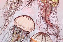 dibujos de mar