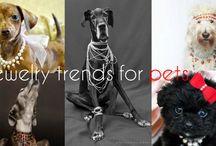 Joyería Para Mascotas / La joyería para mascotas es una manera de consentir a nuestros mejores amigos. ¿Crees que es una tendencia o locura? https://tendenciasjoyeria.com/joyeria-mascotas/