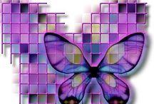 motýli / butterfly, hmyz, brouci
