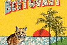 Best Coast / by Jools Osburn