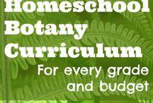 Microscope/Habitats/Zoology/Botany for 4th/6th grade