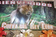 la cueva del Rey león / Negocio de ropa biyu perfumería y regaleria