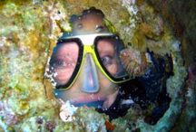 Scuba Diving in Aqaba / Explore the wonders of the Red Sea Coral reefs, beautiful marine life awaits you below the waves. Aqaba is different from most Egyptian red sea resorts as it is not as exploited and no where near the number of divers. So come and have some fun and discover the red sea with out the crowds!