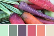 Color Combos / Color combinations to inspire anything from your wedding to your closet to your interior!