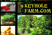 "Keyhole Gardening / Since its February 2012 debut, our ""Keyhole Gardening"" article has topped TCP's ""most popular articles"" list. The compact and relatively easy-to-construct projects really grew on our readers! Find the article at http://www.texascooppower.com/texas-stories/nature-outdoors/keyhole-gardening."