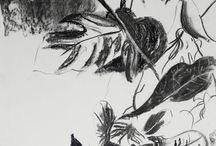 mywork / illustration, art, fusain, collages, encre de chine, plantes, jungle