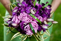 Color Inspiration - Purple / All things Purple! How to bring purple into your Costa Rica Wedding color scheme.
