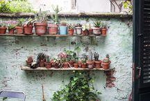Tuinieren en planten