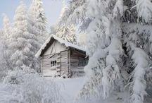 Winter Wonderland / by Peggy Obear